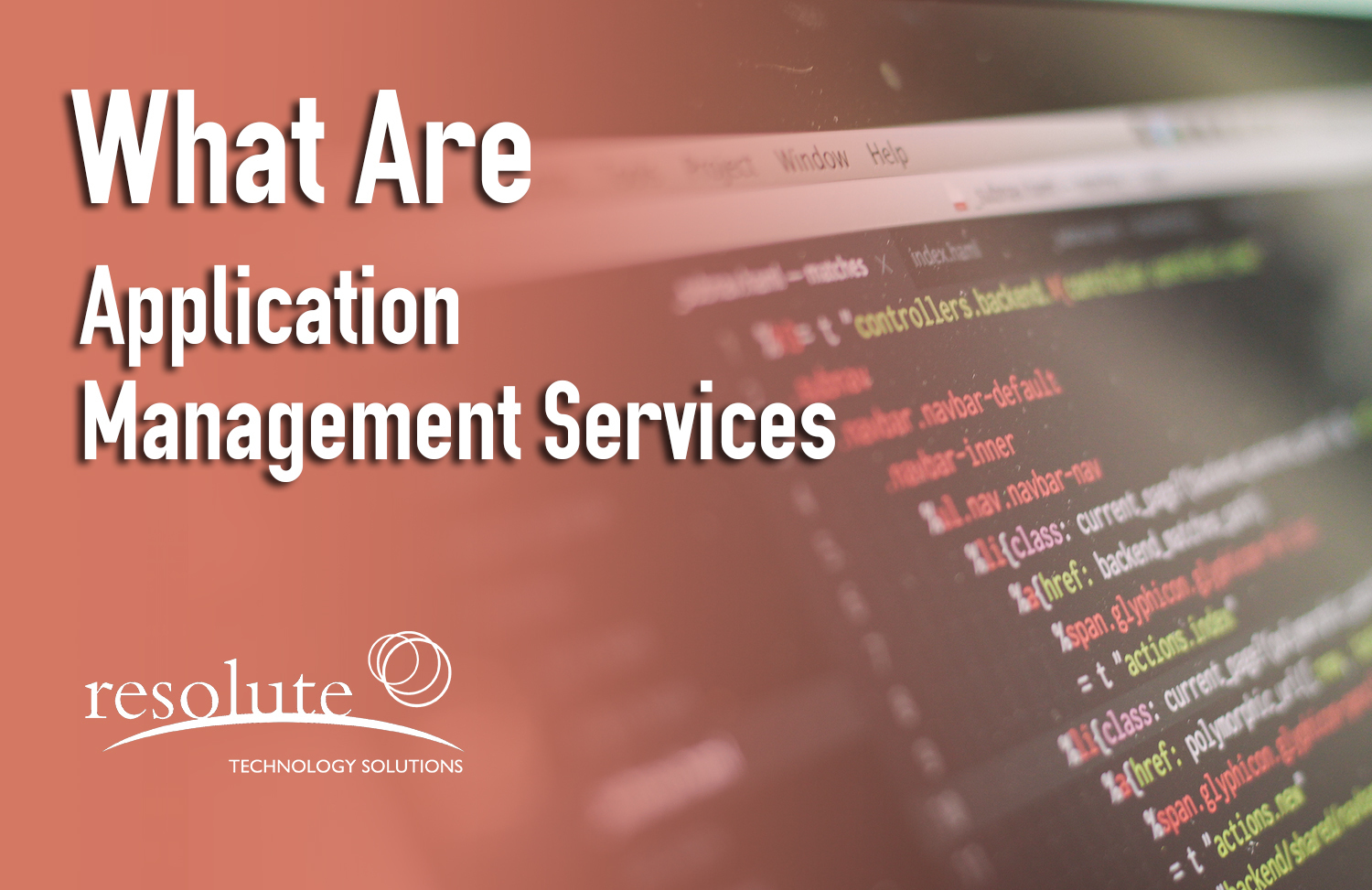 What are Application Management Services (AMS)?